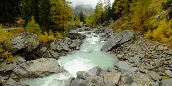 Autumn river in the Gran Paradiso National Park