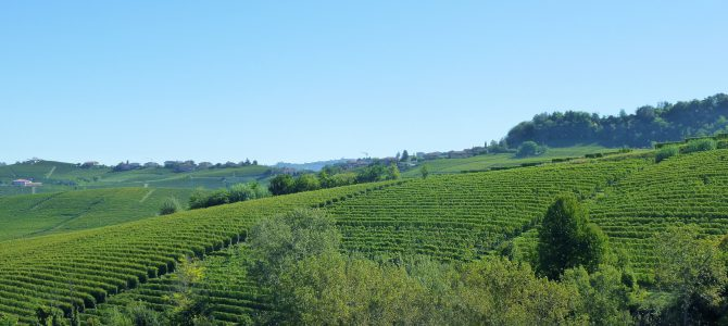 Barolo – King of Italian Wines