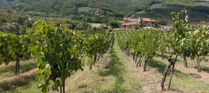 Chianti – Perhaps the Best Red Wine