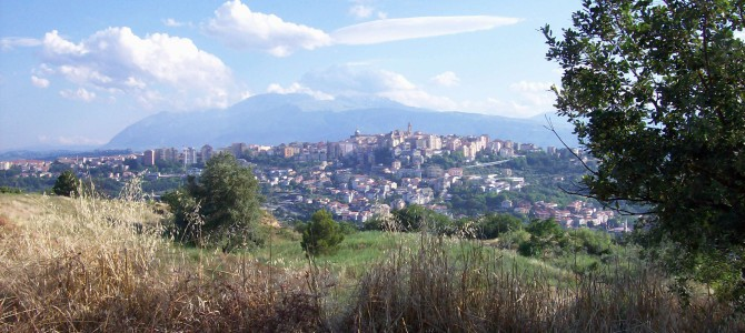 Montepulciano d'Abruzzo – A Rustic, Affordable Wine