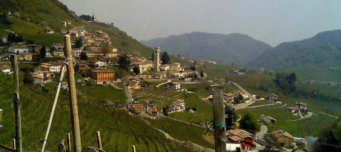 Prosecco – Quality Sparkling White Wine